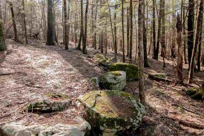 Woodstock NY Residential Lots & Land For Sale: $125,000