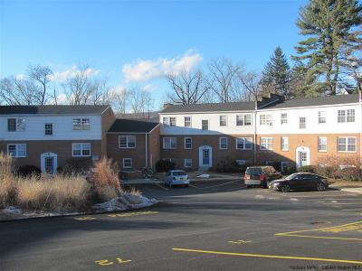 New Paltz Condo For Sale: 14-3 Huguenot Street