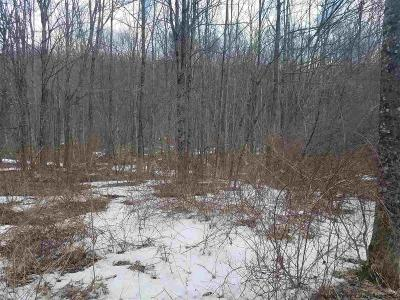 Greene County Residential Lots & Land For Sale: Diamond Notch Road