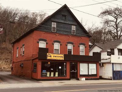 Ulster County Commercial For Sale: 29 N Main Street