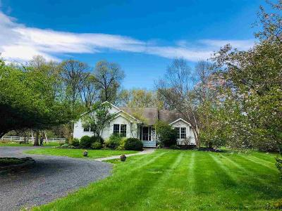 New Paltz Single Family Home For Sale: 157 Plains Road