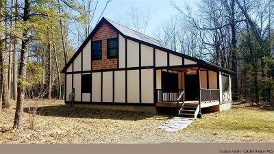 Ulster County Single Family Home For Sale: 56 Lisova Lane