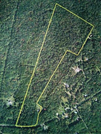 Greene County Residential Lots & Land For Sale: 531 N Lake Road