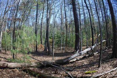 Saugerties Residential Lots & Land For Sale: 830 Church Road