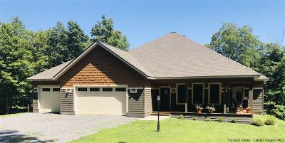 Ulster County Single Family Home For Sale: 459 Main Street