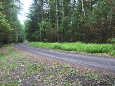 Ulster County Residential Lots & Land For Sale: Bluestone Ridge