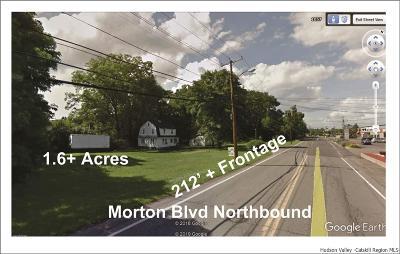 Kingston Commercial For Sale: 1089 Morton Blvd