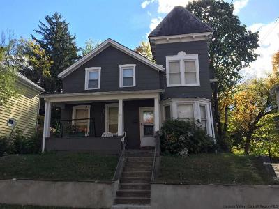 Ulster County Single Family Home For Sale: 154 Henry Street