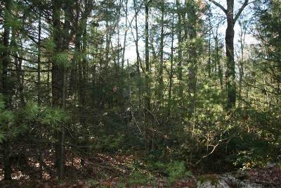 Ulster County Residential Lots & Land For Sale: 40 Via Pioli Rd.
