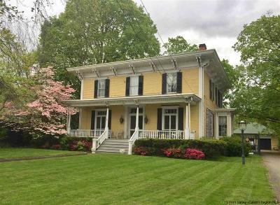 Orange County, Sullivan County, Ulster County Single Family Home For Sale: 103 Albany Avenue