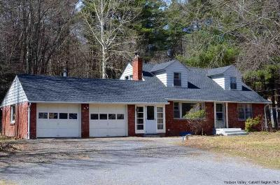 Ulster County Single Family Home For Sale: 431 Zena Road