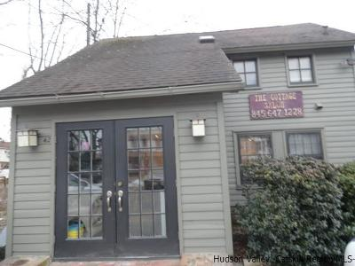 Ulster County Commercial For Sale: 40-42 N Main Street