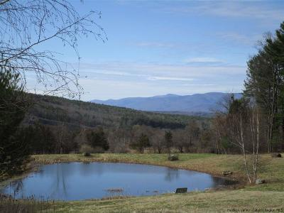 Greene County Residential Lots & Land For Sale: Lot 10 Mountain View Drive