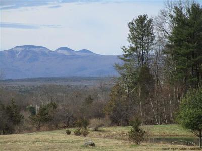 Greene County Residential Lots & Land For Sale: Lot 9 & 10 Mountain View Drive
