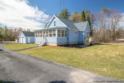 Saugerties Single Family Home For Sale: 869 Route 212