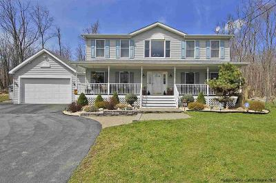 Ulster County Single Family Home For Sale: 57 Sheldon Road