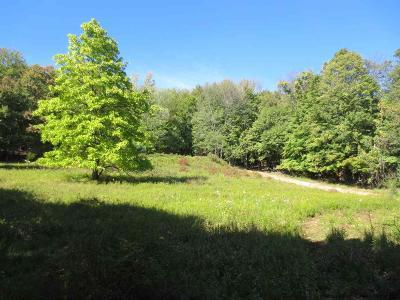 Ulster County Residential Lots & Land For Sale: Upper Samsonville Rd