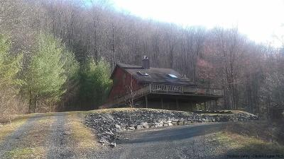 Shandaken Single Family Home For Sale: 7623 Route 28
