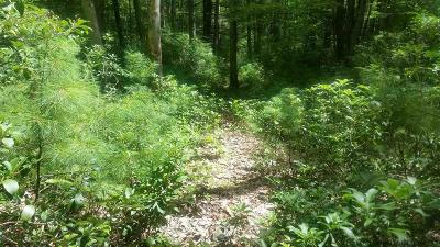 Orange County, Sullivan County, Ulster County Residential Lots & Land For Sale: Ulster Heights