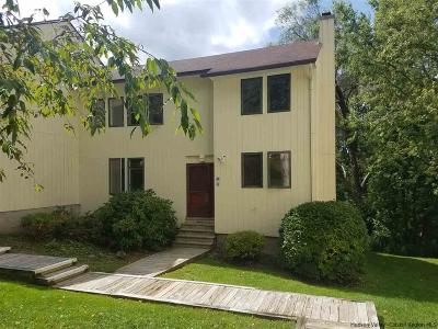 Delaware County Townhouse For Sale: 300 Pines Drive