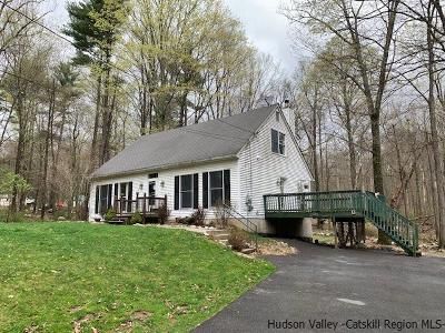 Pine Bush Single Family Home For Sale: 1027 Indian Springs Road
