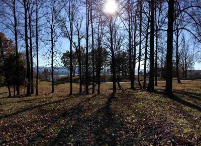 Residential Lots & Land For Sale: Lot #1 River Road