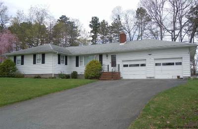 Ulster County Single Family Home For Sale: 165 Conifer Lane
