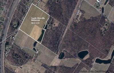Ulster County Residential Lots & Land For Sale: Ohioville Road
