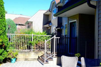Ulster County Condo For Sale: 121 Riverview