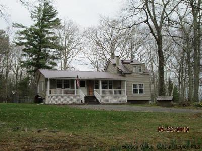 Ulster County Single Family Home For Sale: 15 Sunset Avenue