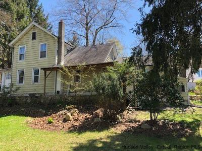 Ulster County Single Family Home For Sale: 25 Chapel Street