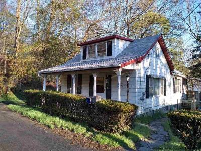 Ulster County Single Family Home For Sale: 146 Third St