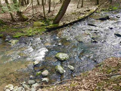 High Falls Residential Lots & Land For Sale: Mossy Brook Road