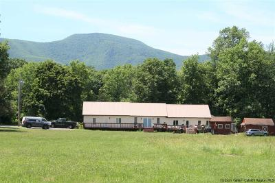 Greene County Multi Family Home For Sale: 1094 County Route 24