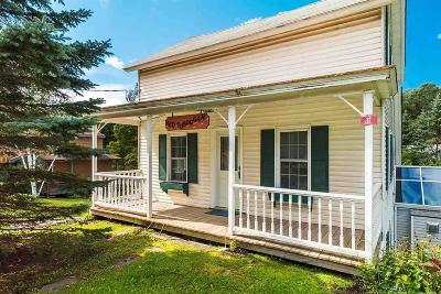 Greene County Single Family Home For Sale: 17 Mitchell Hollow Road