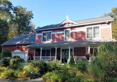 Saugerties Single Family Home For Sale: 87 Mary Ann Avenue
