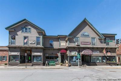 Delaware County Commercial For Sale: 785 Main Street