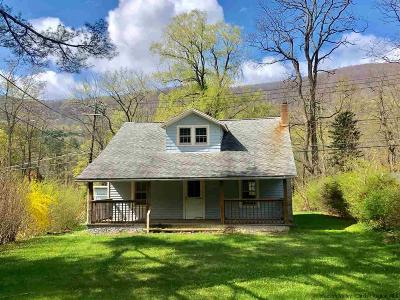 Phoenicia Single Family Home For Sale: 6287 Route 28