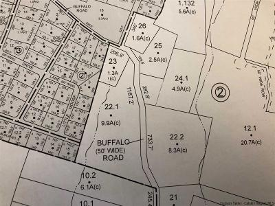 Saugerties Residential Lots & Land For Sale: 115 Buffalo Road