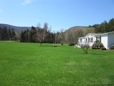 Greene County Single Family Home Accepted Offer Cts: 2521 Route 42