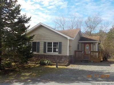 Greene County Single Family Home For Sale: 55 Route 26