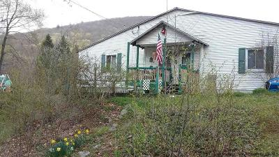 Shandaken Single Family Home For Sale: 506 Herdman Road 1