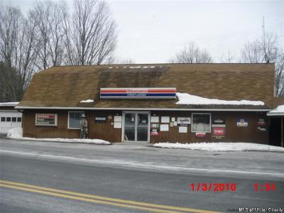 Greene County Commercial For Sale: 5454 Route 32