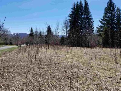 Greene County Residential Lots & Land For Sale: Rt 32c