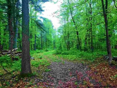 High Falls Residential Lots & Land Fully Executed Contract: Wakan Way