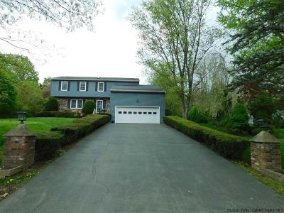 Hurley Single Family Home For Sale: 169 Altamont Drive