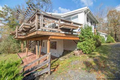 Highmount Single Family Home For Sale: 137 Chanterelle Hill Road