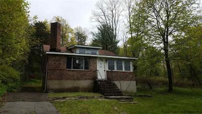 Saugerties NY Single Family Home For Sale: $109,900