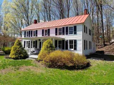 Bearsville Single Family Home For Sale: 48 Wittenberg Road