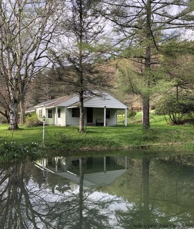 Delaware County Single Family Home For Sale: 920 S River Road